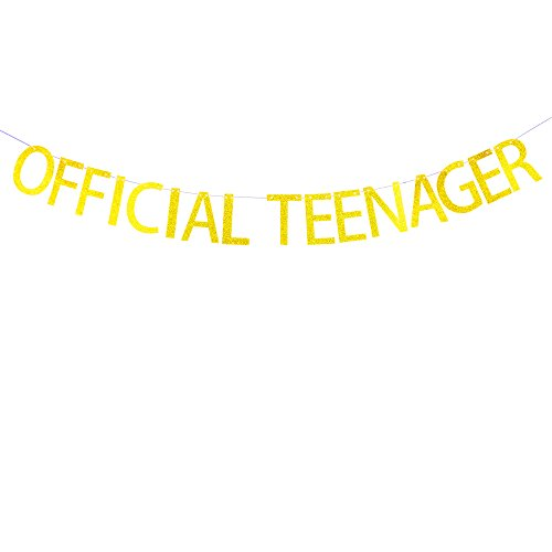 13th Banners Birthday (Succris Official teenager banner for 13th birthday party decorations)