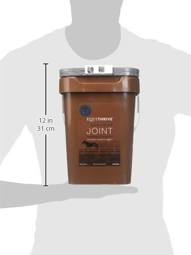 Image of Equithrive Joint Powder - 8 Lb Container (240 Day Supply)
