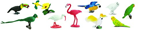 Safari Ltd Exotic Birds TOOB – Comes With 13 Different Hand Painted Toy Figurine Models – Including Parakeet, Macaw, Humming Bird, Toucan, Ibis, Cockatoo, Flamingo, Owl, And More – For Ages 3 And Up