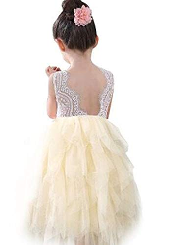 Girl Apricot - Lace Back Flower Girl Dress,Kids Cute Backless Dress Toddler Party Tulle Tutu Dresses for Baby Girls (Long Sleeveless Apricot, 1-2 Years/90cm)