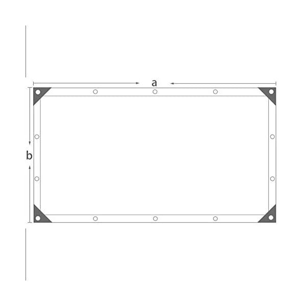 Telo protettivo per protezione solare in polietilene rinforzato, 1 metro, 1 asola esterna per balcone, 18 misure (colore… 3 spesavip
