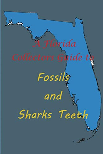 Florida Collectors Guide to Fossils and Shark Teeth ()