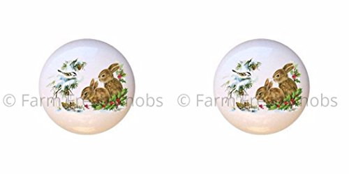 Pine Triple Dresser (SET OF 2 KNOBS - Vintage Bunny Rabbit Bird Christmas Holly Winter Snow Pine Cones - Rabbits - DECORATIVE Glossy CERAMIC Cupboard Cabinet PULLS Dresser Drawer KNOBS)