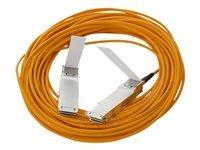 日本ヒューレットパッカード QSFP+ to QSFP+ AOCケーブル 10m 720208-B21 B01350BLWC  10m