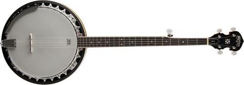 The 6 best banjo armrest 11 for 2020