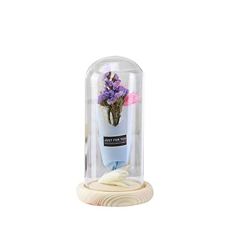 (Best Gifts for Her EdC Immortal Eternal Dried Endless Preserved Enchanted Flower in Glass Led Micro Landscape Romantic Gift for Valentine's Day/Birthday/Wedding/Anniversary/Mothers Day (A))