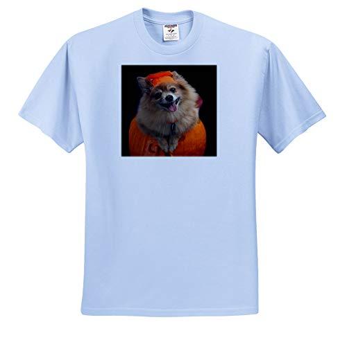 Sandy Mertens Halloween Designs - Happy Pomeranian Dog on Jack o Lantern Halloween, 3drsmm - T-Shirts - Light Blue Infant Lap-Shoulder Tee (6M) (ts_290230_74)