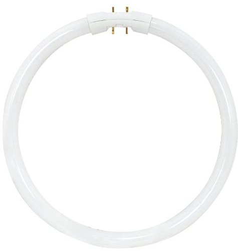 Circline Led Light Bulb in US - 9