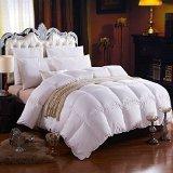 Egyptian Bedding 1000TC Hungarian GOOSE DOWN Comforter - King