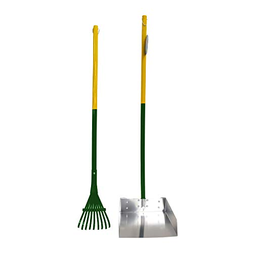 Four Paws Dog Rake & Scooper Set for Pet Waste Pick-Up, Large, Green & Silver