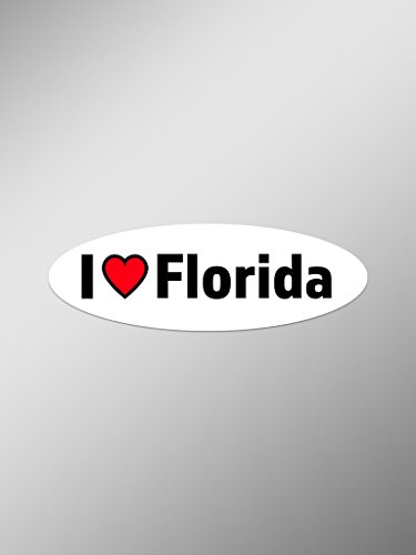I Love Florida Vinyl Decals Stickers ( Two Pack ) | Cars Trucks Vans Windows Walls Laptop Cups | Printed | 2 - 5.5 Inch Decals | KCD1359 (Naples Florida Gift Baskets)