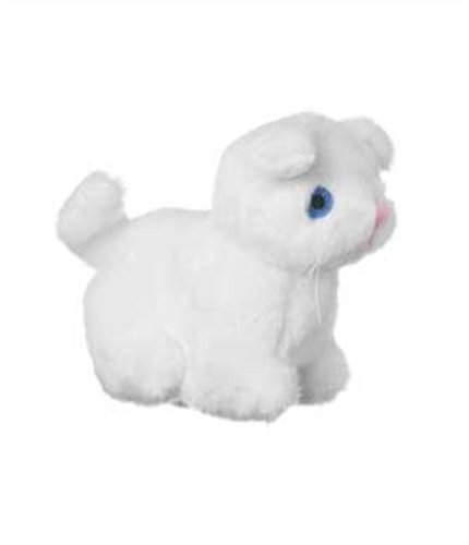 Multipet Look Who's Talking Cat Dog Toy, My Pet Supplies