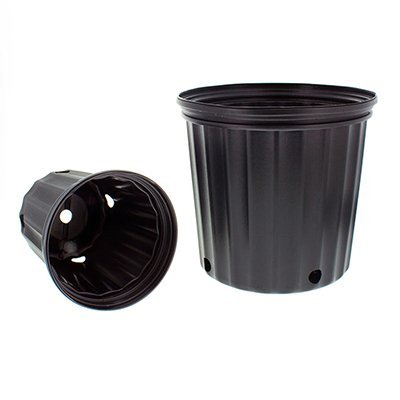 Elite Two Gallon (trade) Nursery Container, 10 each: Garden & Outdoor
