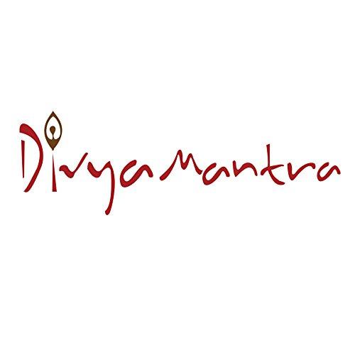 Divya Mantra Feng Shui Good Luck Charm Keychain