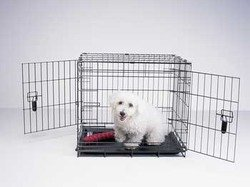 Four Paws Large Double Door Deluxe Dog Crate With Divider Panel