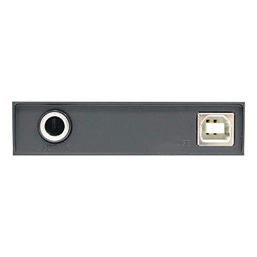 midiplus, 32-Key Midi Controller, 32-Key (AKM320)