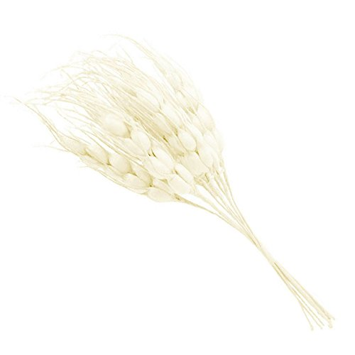 Wheat Ear Bouquets - SODIAL(R)10pcs Foam Autumn Wheat Artificial Flower Bouquet For Wedding Decoration DIY Scrapbooking Decorative Wreath Fake Flowers£¨milk white£