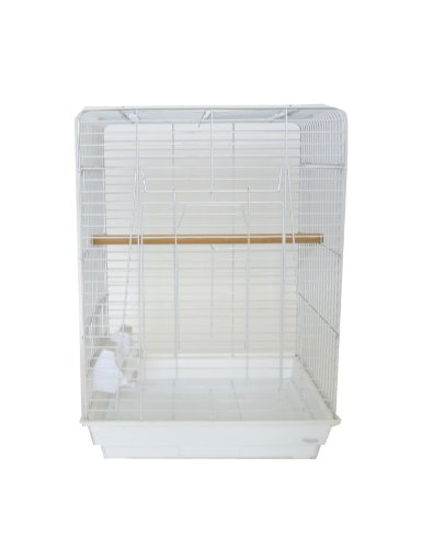 (YML 20-Inch by 16-Inch Small Open Play Top Parrot Bird Cage, White)