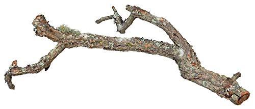 Trixie 76409Tronchos, liège Branches de Mix