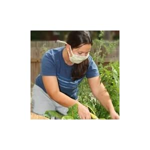 Pink Dogwood Flowers Dust and Allergy Mask - gardening