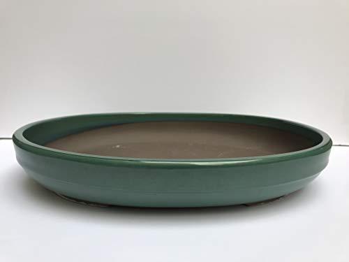 (Kotobuki Japanese Glazed 16
