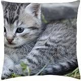 Heavenly Blue - Throw Pillow Cover Case (18