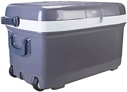 Dljyy Enfriar Box Car Frigorífico, 45L Enfriar Nevera fría y ...