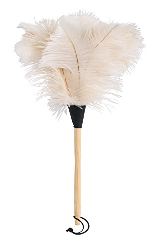 - REDECKER Ostrich Feather Duster with Varnished Wooden Handle, White, 19-3/4-Inches, Set of 2