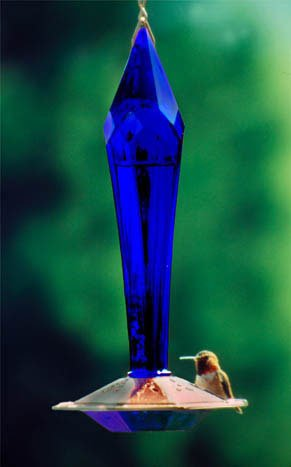 Hummingbird Feeder Faceted Cobalt - Gold Hummingbird Feeder
