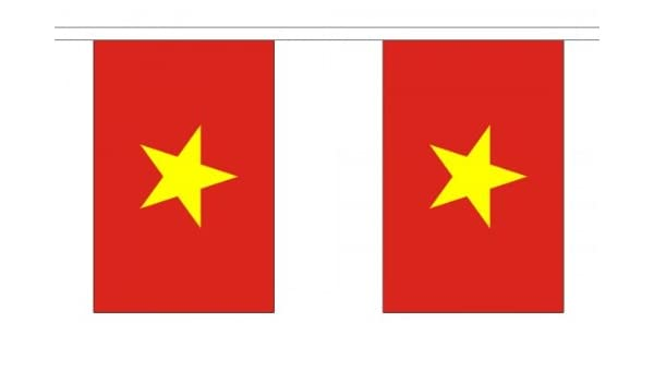 9 metros 30 (22,86 cm x 15,24 cm) de la bandera de Vietnam ...