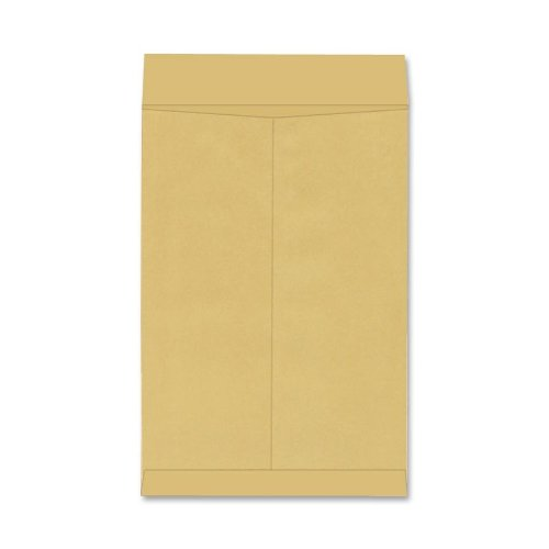 Quality Park Jumbo Size Envelopes, 22 x 27 Inches, Brown Kraft, 25 per Box (42357) by Quality Park