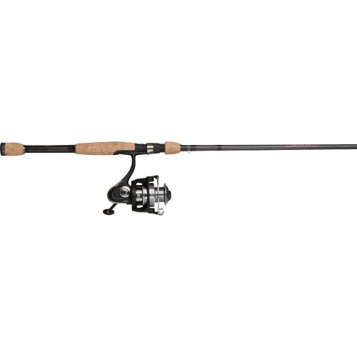 Buy mitchell spinning reel combo