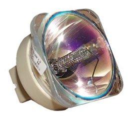 交換用for VIVITEK dw832裸ランプのみ交換用電球   B076QJJ8NM