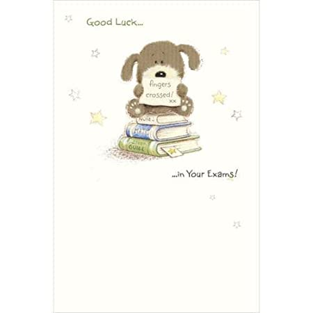 Good luck in your exams woof good luck greetings card amazon good luck in your exams woof good luck greetings card m4hsunfo