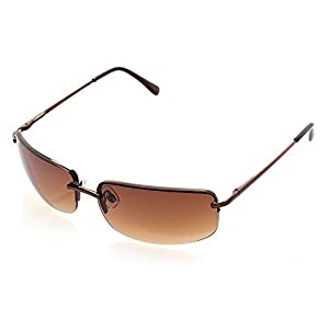 NYS Collection Eyewear Astor Place Metal Sunglasses (Brown, Brown)
