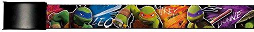 TMNT Cartoon TV Series Turtles Color Splash Web Belt (Ninja Turtles Sensei)