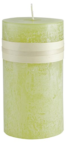 Lemongrass Timber Collection Pillar Candle (2x4)