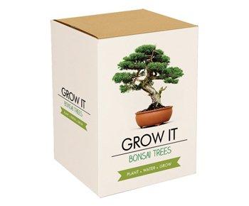 Monsterzeug Bonsai Baum Zum Selberpflanzen, Mini-Baum Set, Selber Züchten, Pflanzen Selber Züchten