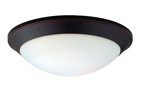 (Dolan Designs 5402-78 2Lt Bolivian Rainier 2 Light Flushmount)