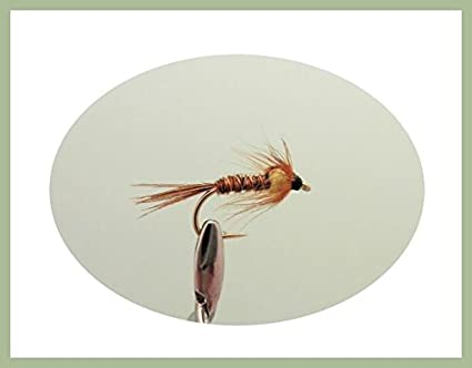 6 Pack for trout or Grayling Choice of Sizes Pheasant Tail Nymph Flies Fishing