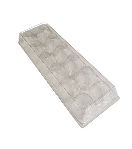 Recycled PETE Clear Plastic Tri-Fold Egg Cartons (Holds 1 Dozen Eggs) by MT Products - 15 Pieces (Egg Plastic Clear)