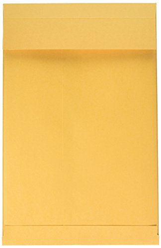 Plain Expansion Envelopes - Quality Park Expansion Envelopes, Redi-Strip, Brown Kraft, 9 x 12 x 2, 25 per Pack, (93334)