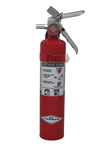 (Amerex B410T, 2.5lb  Purple K Chemical Class B C  Fire Extinguisher)