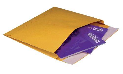 Kraft Envelope Expansion Side Open - Quality Park Open-Side Expansion Envelopes, Redi-Strip, Brown Kraft, 10 x 15 x 2, 100 per Box, (E9140)