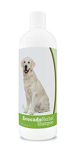 (Healthy Breeds Herbal Avocado Dog Shampoo for Dry Itchy Skin for Golden Retriever  - OVER 200 BREEDS - For Dogs with Allergies or Sensitive Skin - 16 oz)