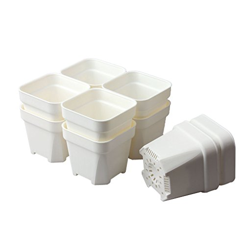BangQiao 3.65 Inch Plastic Square Nursery and Seedlings Pots, White Plastic Flower Plant Pots, Pack of 10