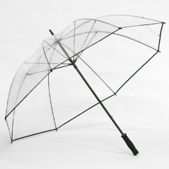 Clear Golf Umbrella Color: Black Trim