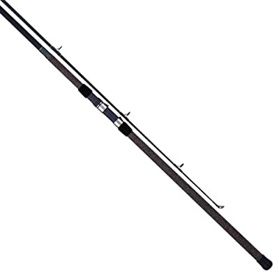 Tica Surf Casting Fishing Rod by TICA