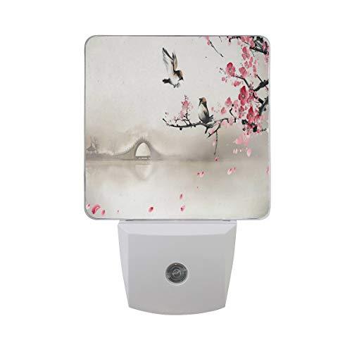 Night Light Bird and Plum Illustration Led Light Lamp for Hallway, Kitchen, Bathroom, Bedroom, Stairs, DaylightWhite, Bedroom, Compact