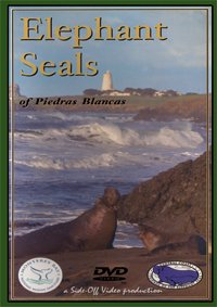 Elephant Seals of Piedras Blancas DVD